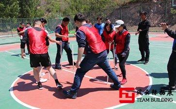 拓展训练:互相信任、团结协作五篇