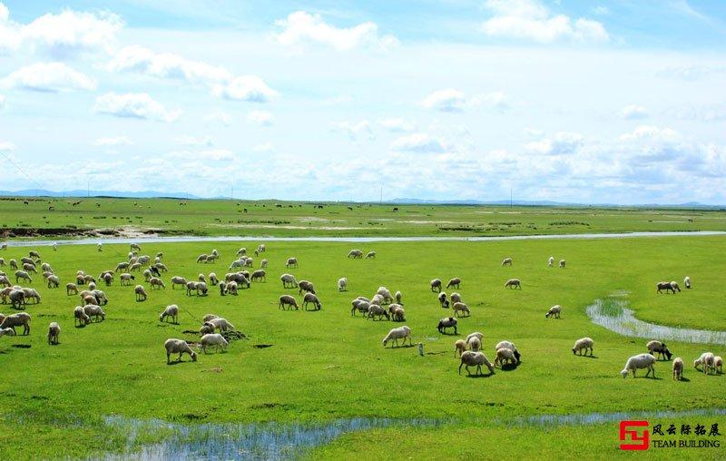 北京周边草原团建|推荐15个草原拓展活动基地